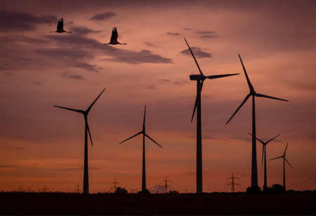 Why Wind Analytics Has Gained Significance During COVID-19