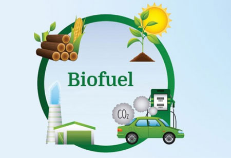 Do Biofuels Fit Into Today's Energy Landscape?